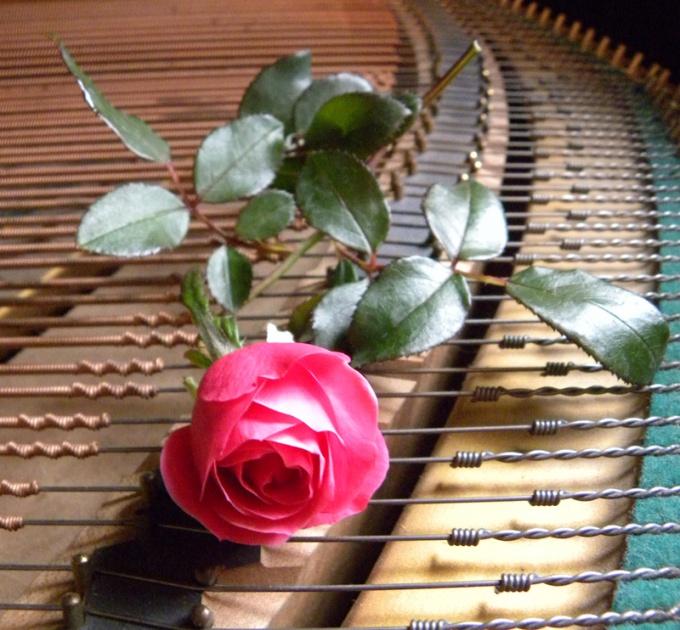 Игра на фортепьяно: как научиться самостоятельно