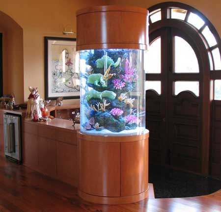 How to soften the water in the aquarium