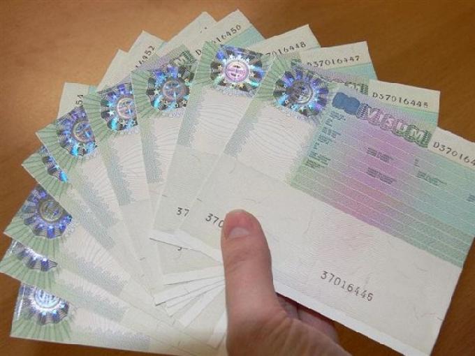 Как сделать шенгенскую визу на год