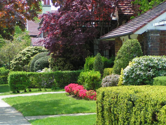 How to make a garden plot in the property