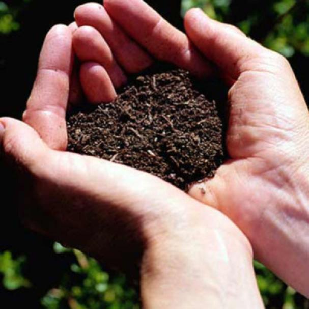Как подготовить почву к посеву