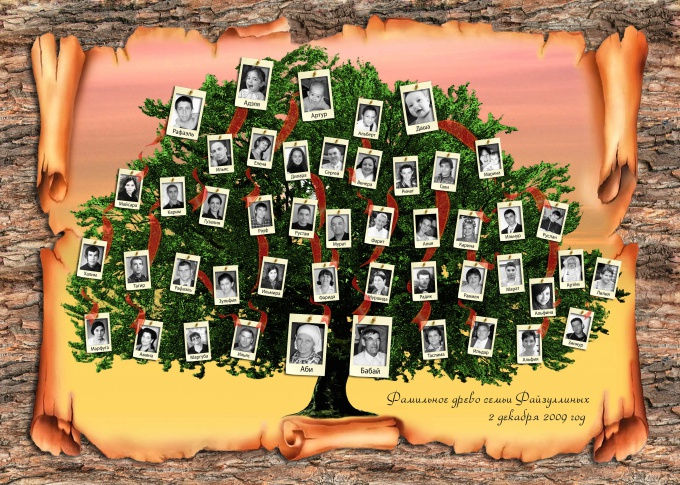 Как узнать корни своей фамилии