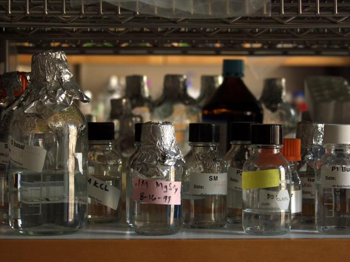 Как отличить метанол от этанола