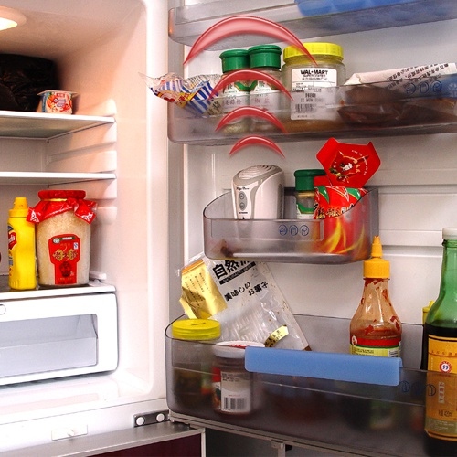 How to get rid of mold in the refrigerator