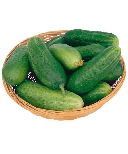 How to keep fresh cucumbers