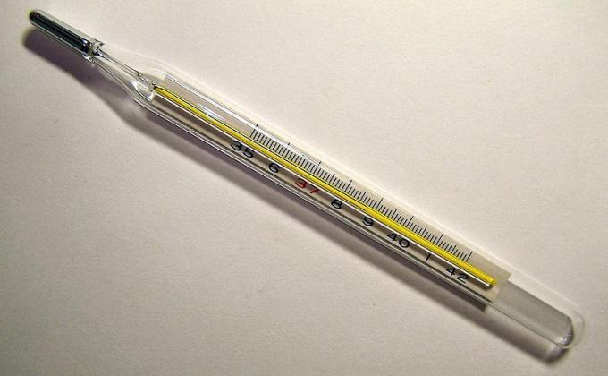 Как измерить температуру тела градусником