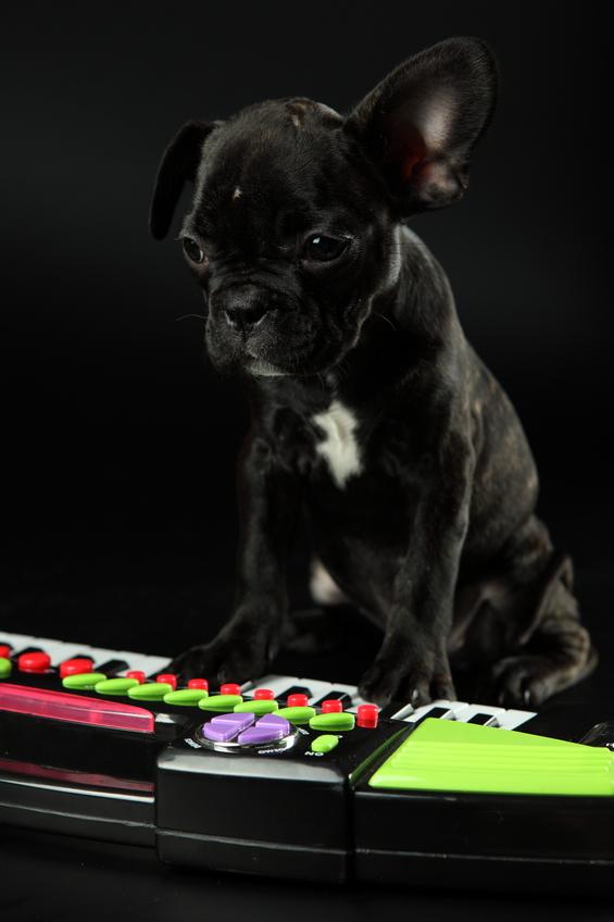 Как научиться играть на клавишах