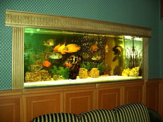 Как встроить аквариум в стену