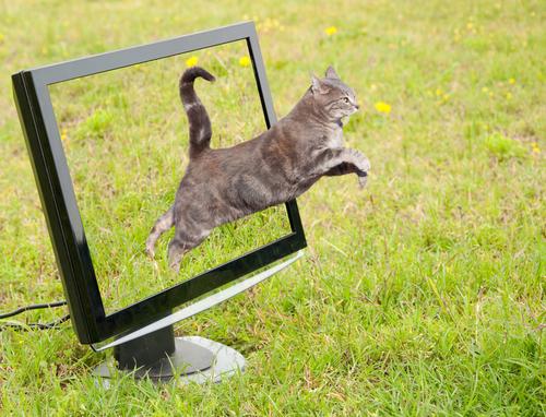Как поменять частоту обновления экрана