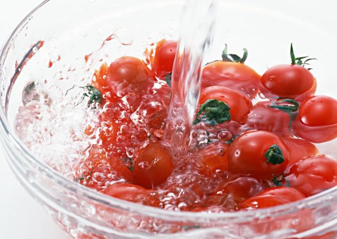 Как вырастить огурцы и помидоры