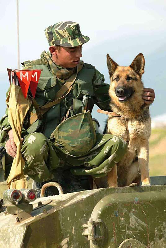 Как поздравить солдата