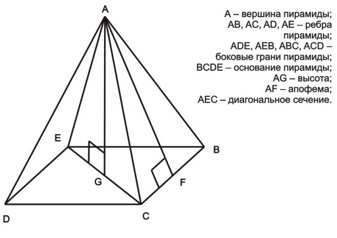 Как найти высоту в правильной пирамиде