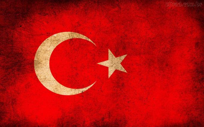 Как оформить рабочую визу в Турцию