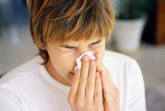 трава от аллергии на коже