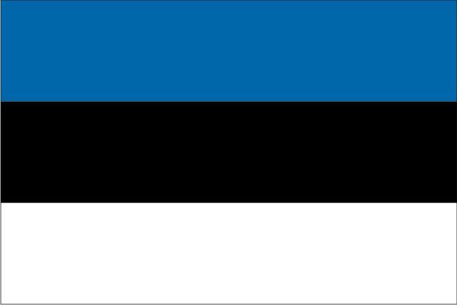 Как получить эстонскую визу