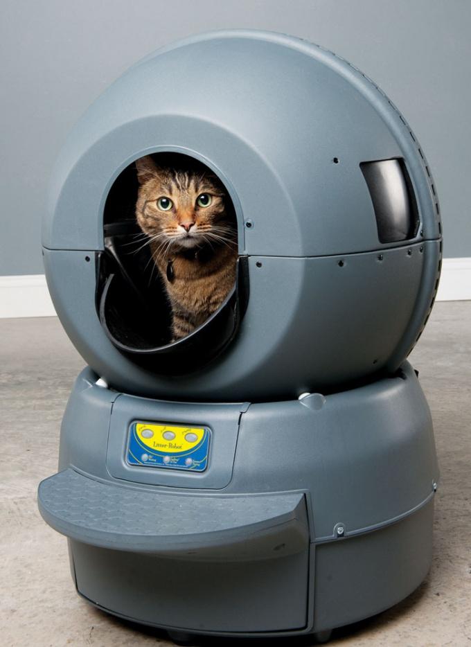 кошачий туалет домик