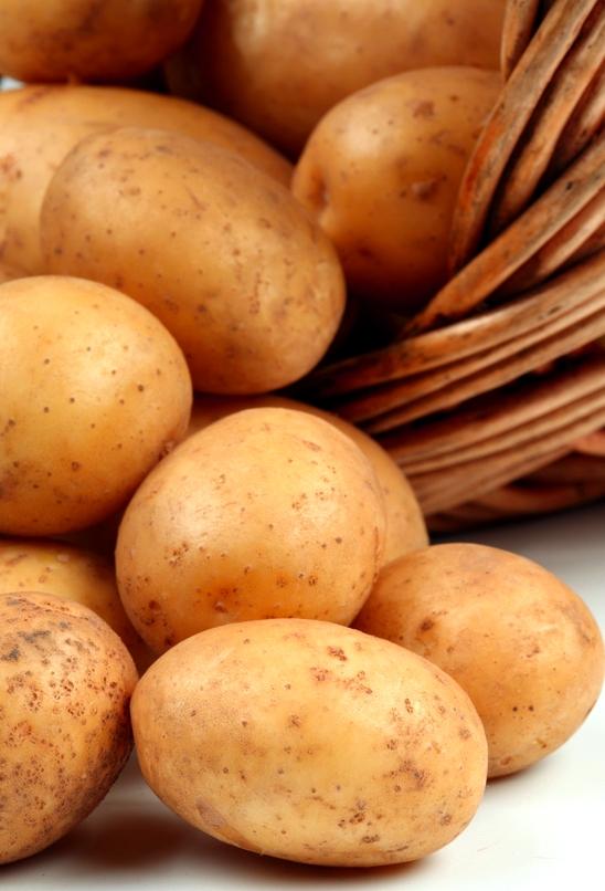 Как вырастить картошку семенами