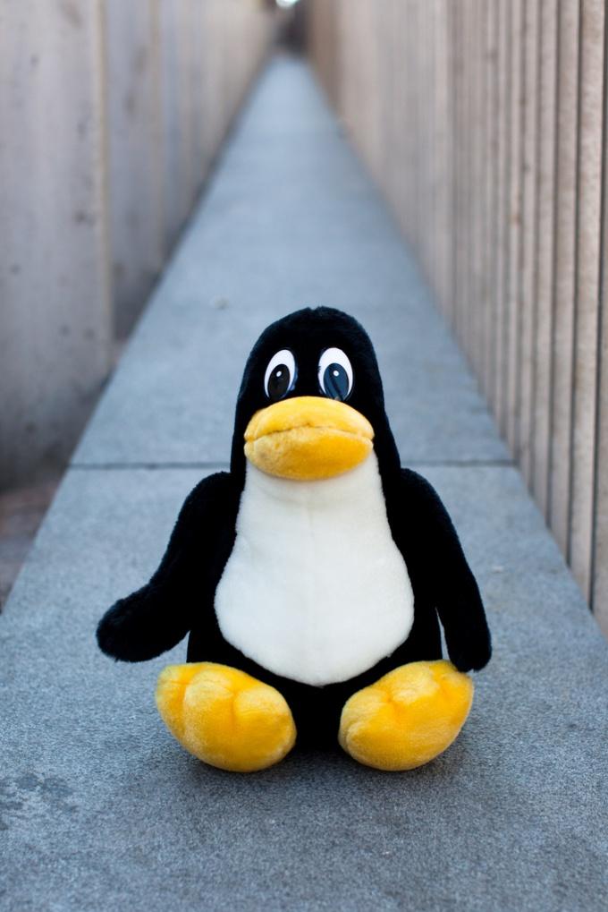 Как ввести Linux