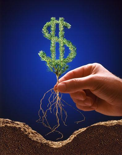 Как получить максимальную прибыль