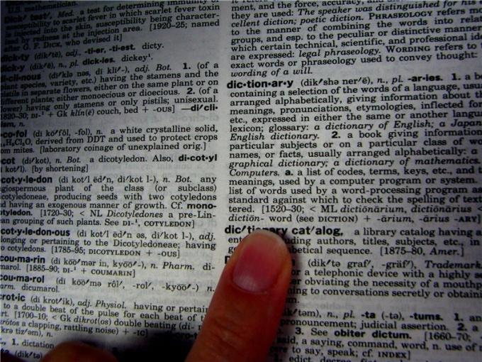 Как установить словарь в Опере