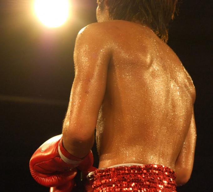 Как выбрать перчатки для бокса