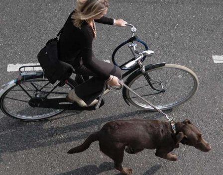 Как разобрать вилку велосипеда