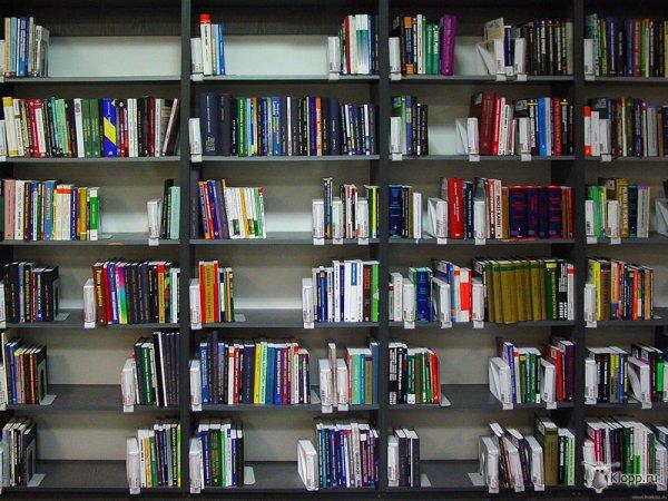 Как сделать каталог статей на сайте