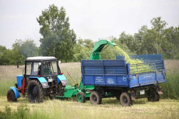 Как оформить крестьянское хозяйство