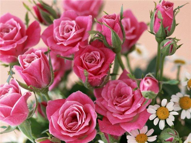 Как заказать цветы в интернете