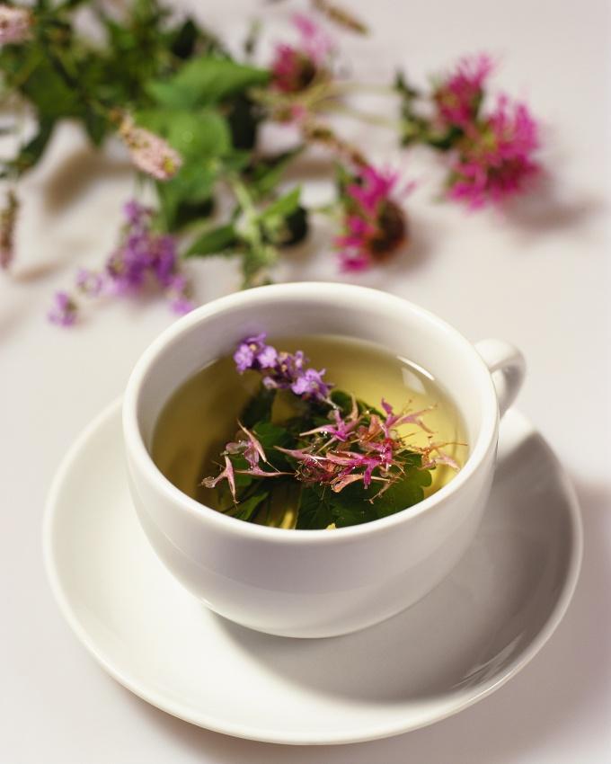 How to make Ivan tea