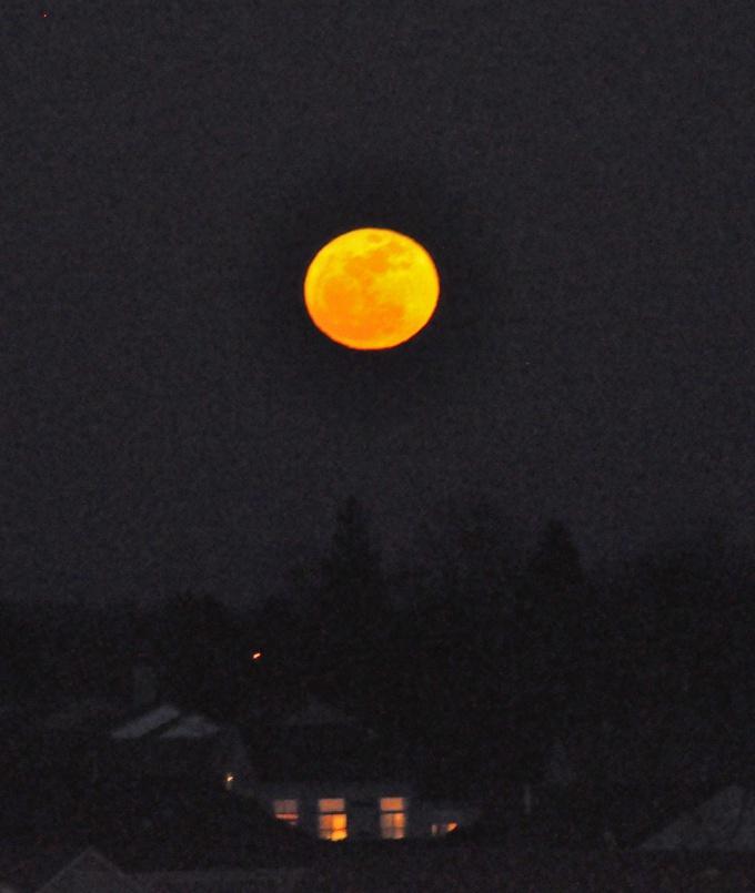 Как узнать лунные сутки