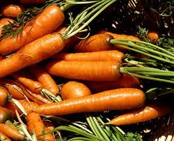 Морковь: как сохранить ее свежей