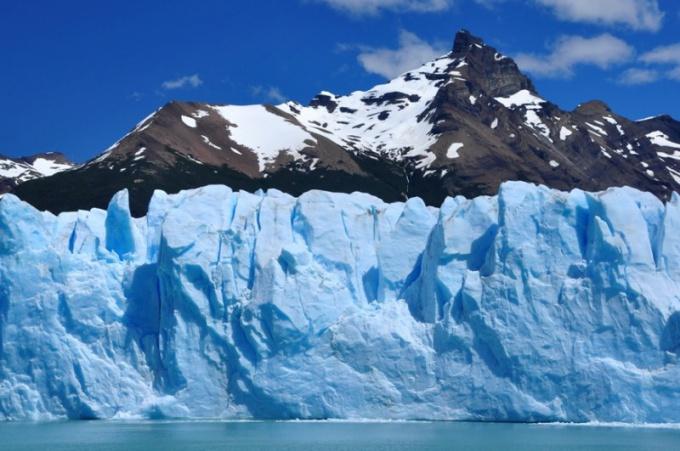 Как выжить в Арктике