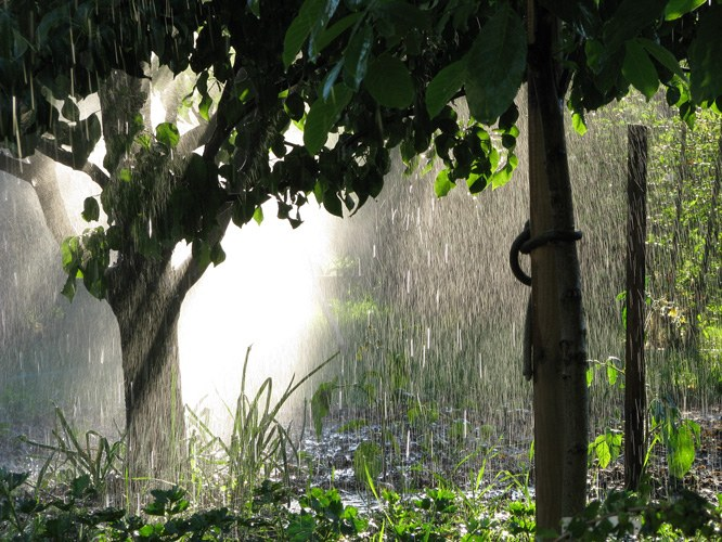 Как нарисовать дождь в Фотошопе