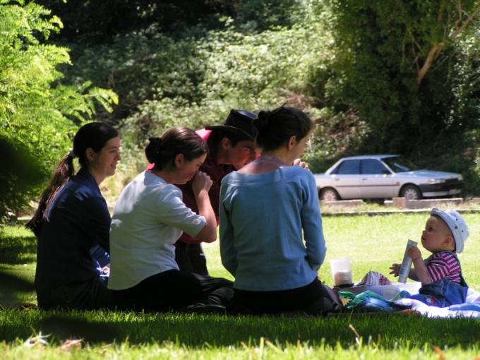 Как организовать отдых на природе