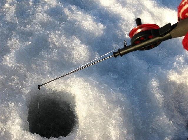 Как сохранять червей зимой