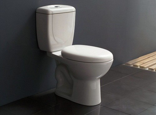 How to get rid of stones in the toilet