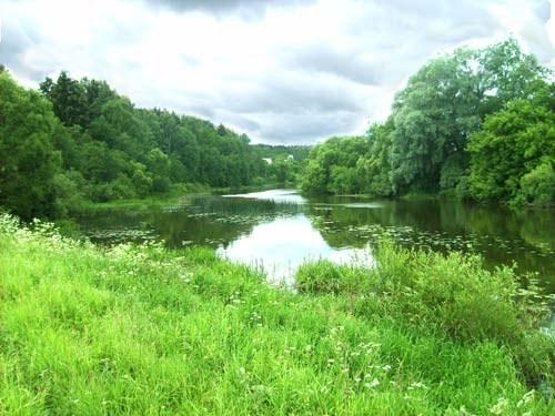 Земельный пай: как приобрести и оформить собственность
