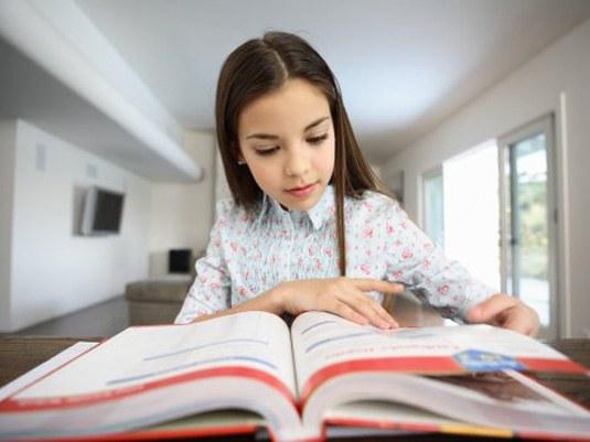 Как проверить качество знаний у школьника