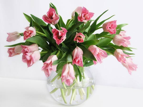 Which flowers are presented on March 8