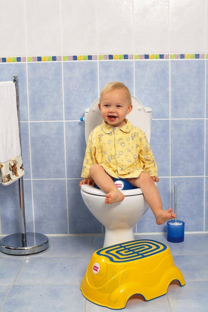 How to teach a child to the toilet