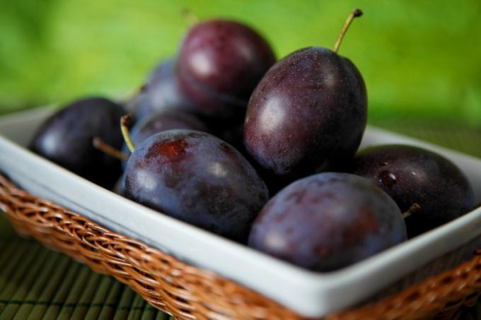 Как сделать естественное вино из сливы