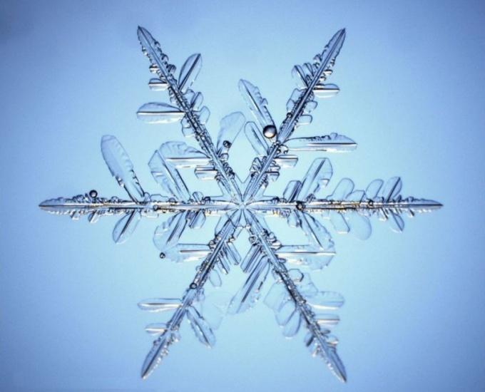 Как определить температуру замерзания