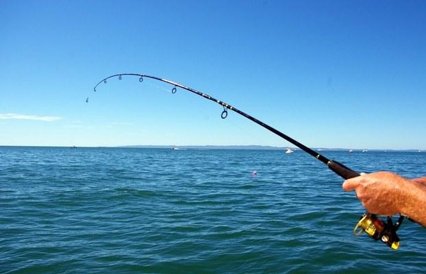 Как предпочесть спиннинг для рыбалки