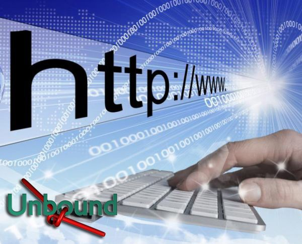 How to enable the dns server