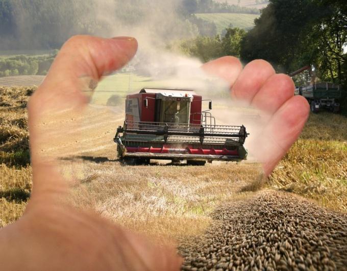 Как создать сельскохозяйственный кооператив