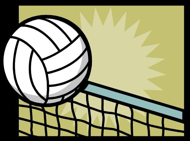 Как организовать чемпионат по волейболу