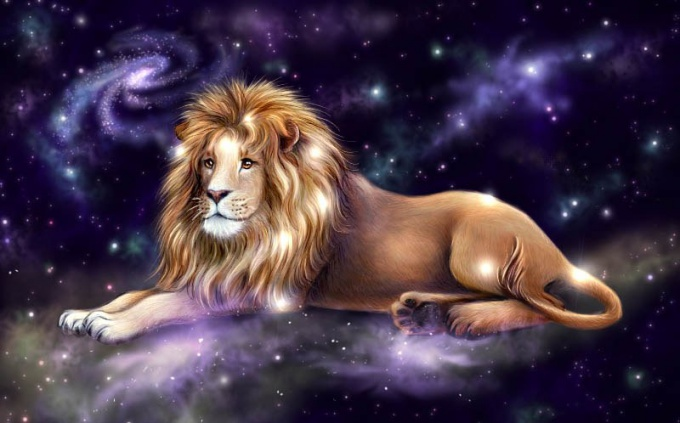 How to captivate a man-Lion