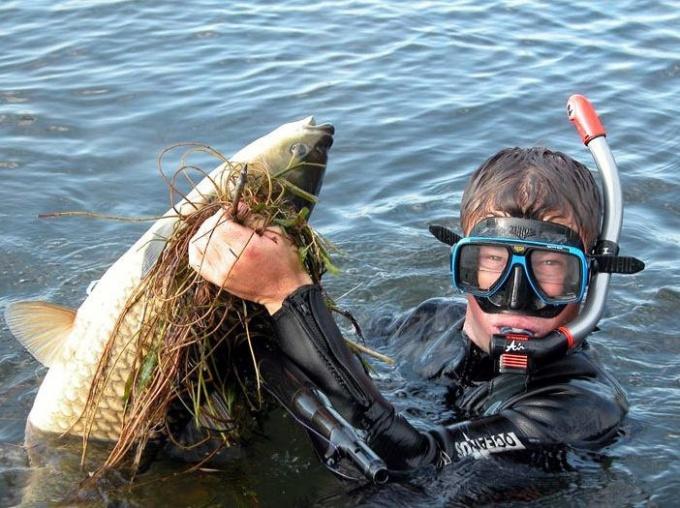 Как сделать самодельное подводное ружье