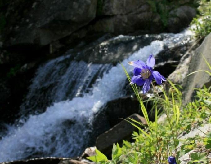 Как отвести грунтовые воды